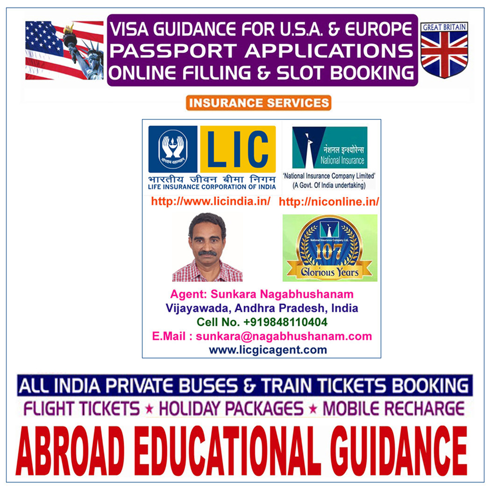 Insurance Agent and Visa Guidance